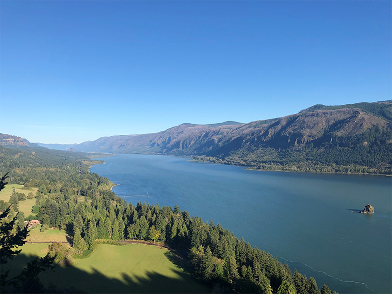 View of the Columbia River Gorge on a clear day from the Cape Horn lookout.